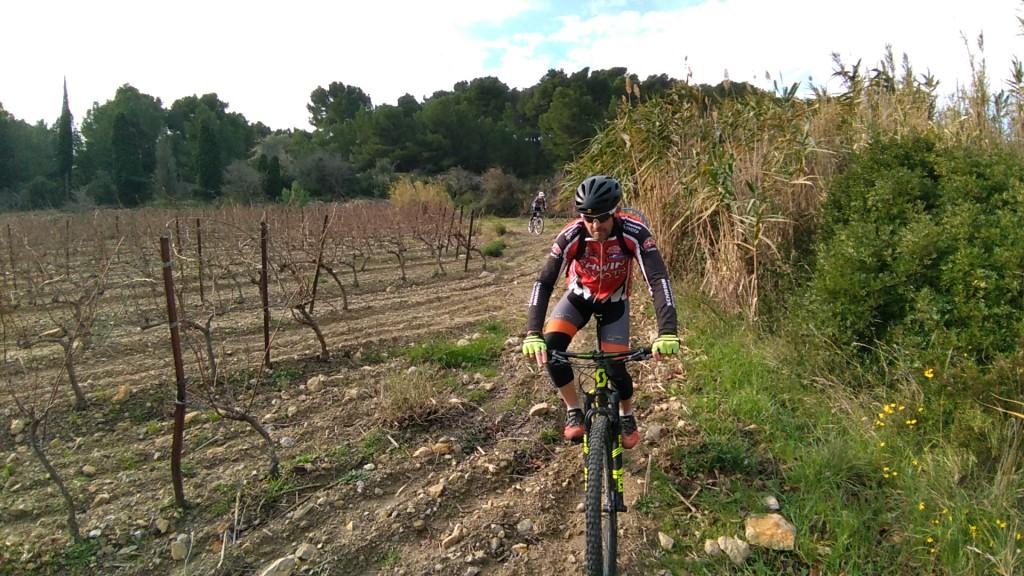 Xavier notre viticulteur de Lézignan observe un champ de la concurrence :-)