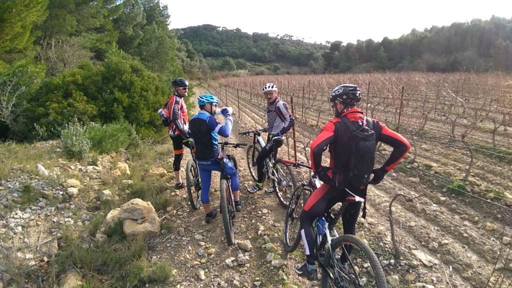 Petit arrêt de la fine équipe en bordure de vigne.